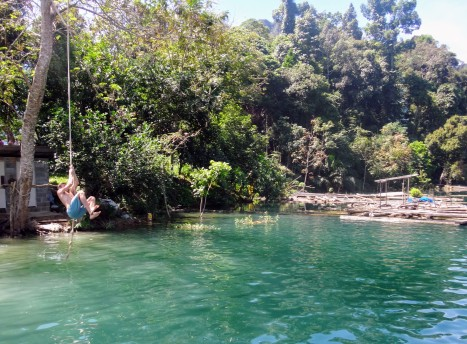 Swings, ponds and nature are all over this place