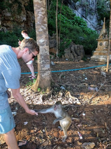 Playing with monkeys around Thailand